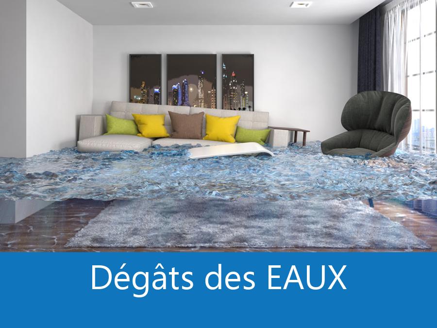 expert dégâts des eaux 17, expertise dégâts des eaux Charente-Maritime, expert bâtiment Rochefort, expertise inondation La Rochelle,